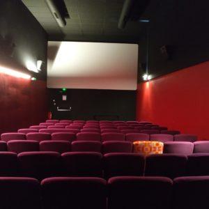 Interview de Rodolphe, directeur du cinéma indépendant labellisé art et essais de Villefranche, Les 400 coups