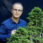 L'entreprise végétale - le management à l'école du bonsaï - Rencontre avec l'auteur François Pinochet